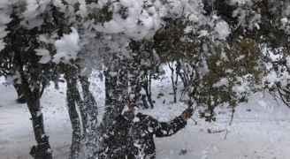 طقس العرب: تساقط خفيف للثلوج على بعض مرتفعات عمان