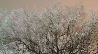 """درجات حرارة صغرى """"سالبة"""" سجلتها العديد من مناطق الأردن فجر الاثنين"""