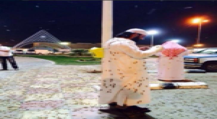 """جيش من الجراد يهاجم محافظة القريات على الحدود الأردنية - السعودية """" صور """""""