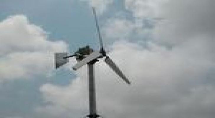 تأهيل  4 شركات لتقديم طلبات توليد الكهرباء بالرياح