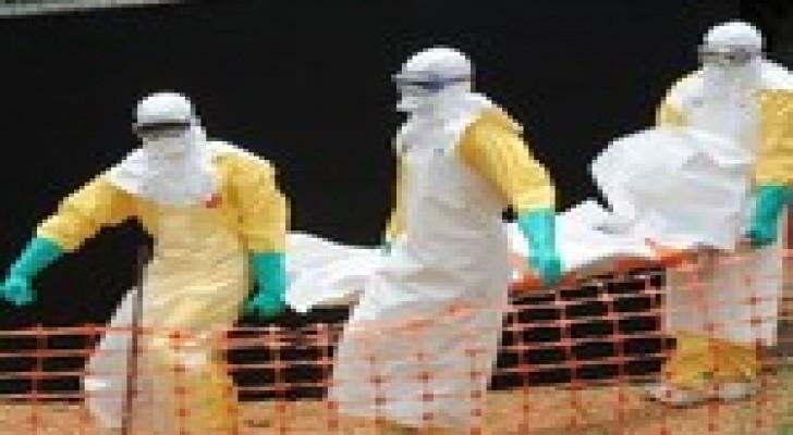 ارتفاع وفيات الإيبولا إلى 4950 حالة