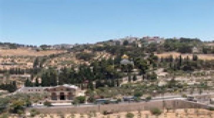 الاحتلال يستولي على 13 ألف دونم من أراضي بيت إكسا