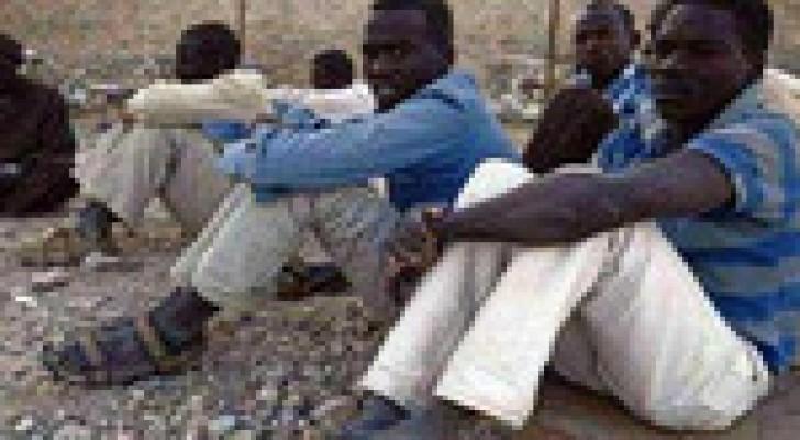 ضبط 313 صوماليا حاولوا دخول اليمن بطريقة غير شرعية