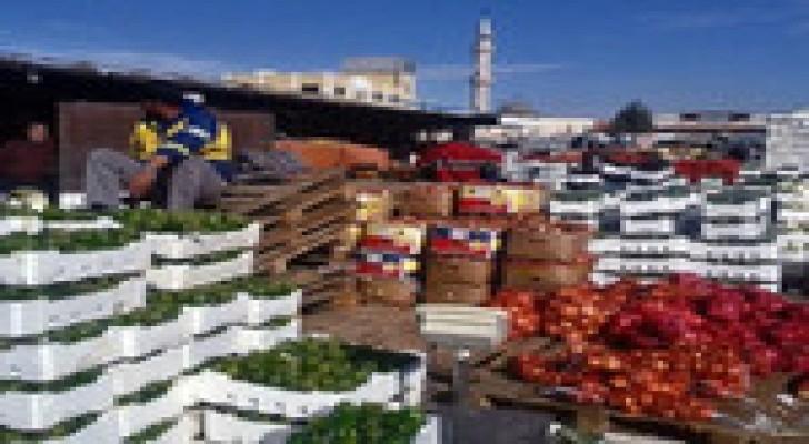 404 مليون دينار قيمة صادرات الخضار والفواكه خلال 9 شهور