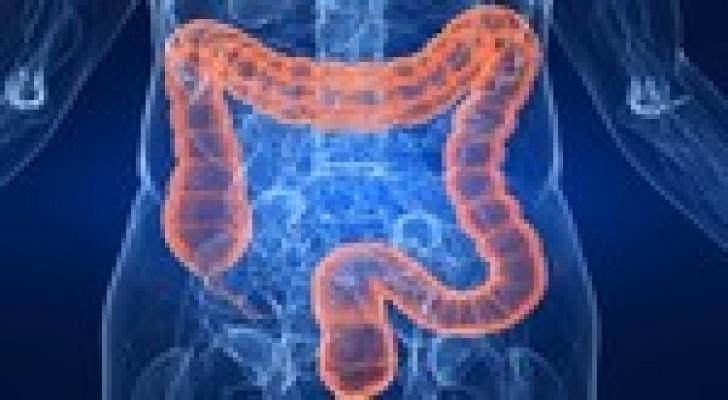 الغذاء غير الصحي يسبب انتشار سرطان الامعاء بين الشباب