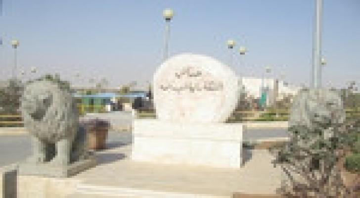 """"""" فعاليات متنوعة"""" في حدائق الملكة رانيا العبد الله"""