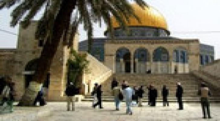 """متطرفون من """"أمناء الهيكل"""" يقتحمون الأقصى بحراسة من جيش الاحتلال"""