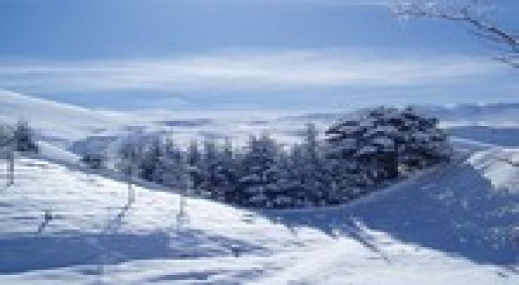 الثلوج تحاصر مراقبين للأمم المتحدة في جبل الشيخ