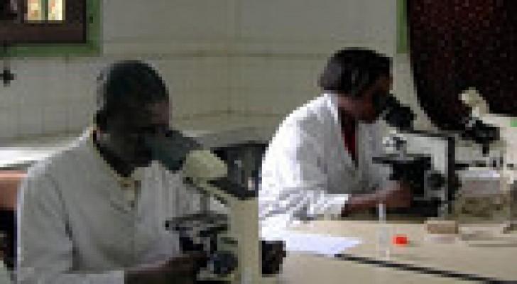 الطاعون يودي بحياة 47 شخصا في مدغشقر