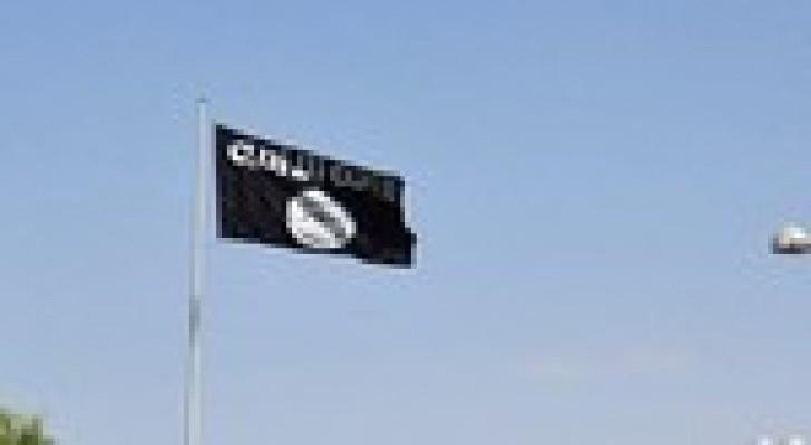 الاتحاد العالمي لعلماء المسلمين : تنظيم داعش حرام