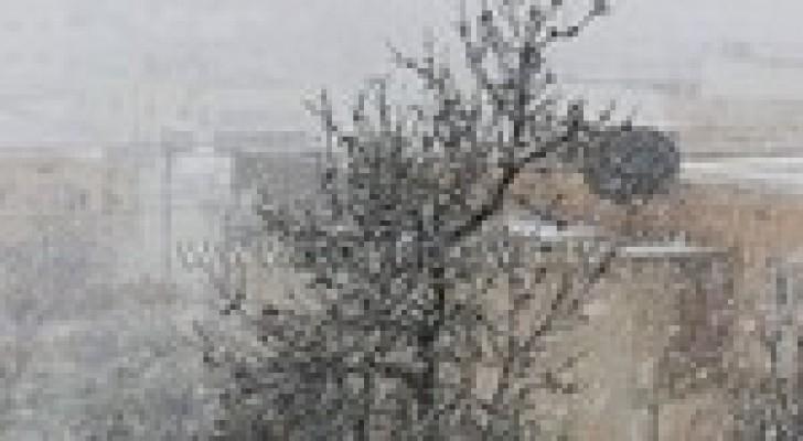 تساقط كثيف للثلوج على محافظة عجلون .. صور