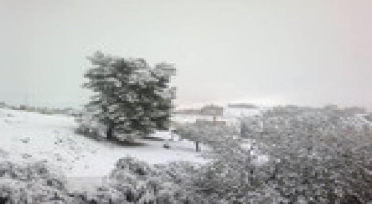 """ثلاث غرف عمليات في لواء ديرعلا للتعامل مع العاصفة """" جنى"""""""