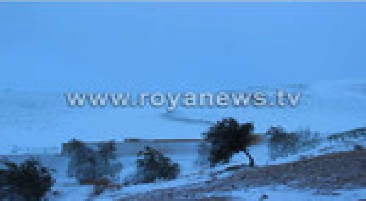 زراعة وادي الاردن تدعو المزارعين لأخذ الحيطة والحذر