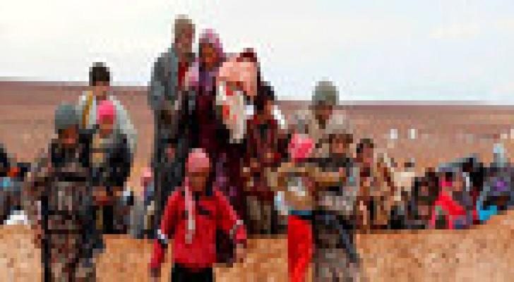 حرس الحدود : استقبال 277 لاجئا سوريا خلال الـ 72 ساعة الماضية