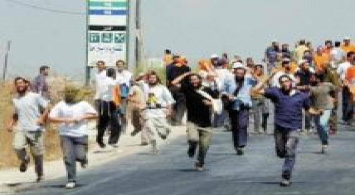 """نابلس: مستوطنون يقتحمون مستوطنة """"حومش"""" المخلاة"""