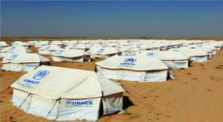 دراسة موسّعة لنقل مخيمي الزعتري والأزرق إلى الرويشد