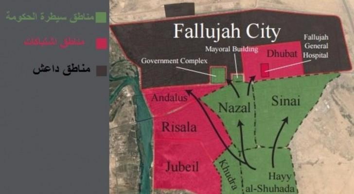 التحالف الدولي: الجيش العراقي لم يحرر سوى ثلث الفلوجة