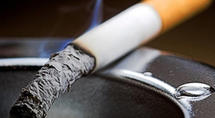 السجائر ثاني أكبر إيرادات مصر بعد قناة  السويس