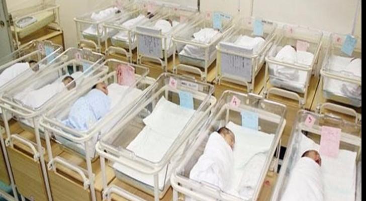 143 مولود يومياً في غزة