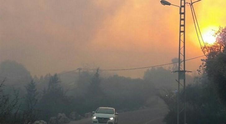الاحتلال يطلب مساعدة اليونان وايطاليا في إخماد الحرائق
