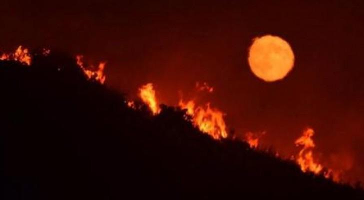 حريق غابات هائل في كاليفورنيا يجبر السكان على إخلاء منازلهم