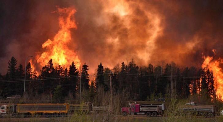 إجلاء عشرات الآلاف من منازلهم بسبب حرائق هائلة للغابات غرب كندا