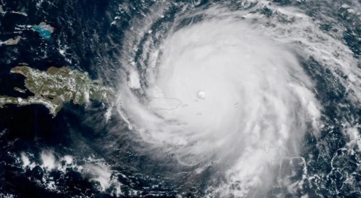 الاعصار ايرما