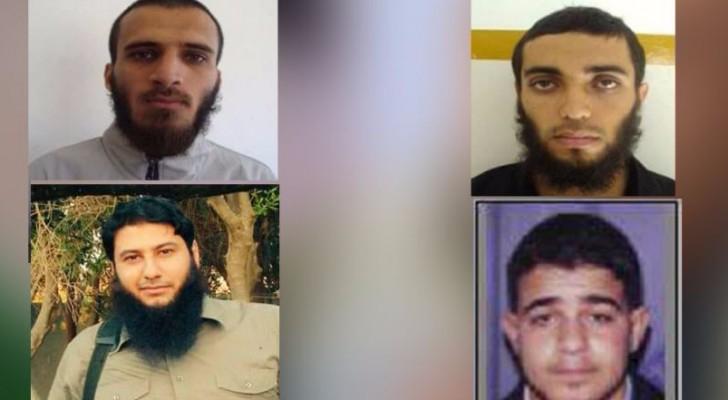 """الأمن الداخلي في غزة يعتقل 4 """"تكفيريين"""""""