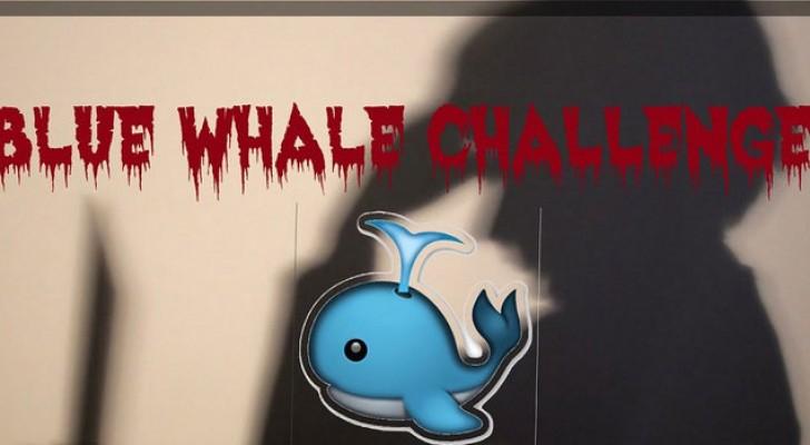 الاتصالات تحذر من تداول لعبة الحوت الازرق