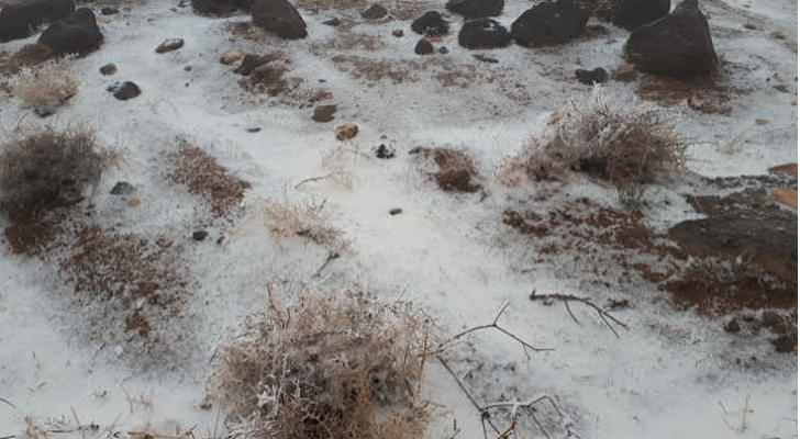 جانب من الثلوج التي شهدتها بعض مناطق المملكة