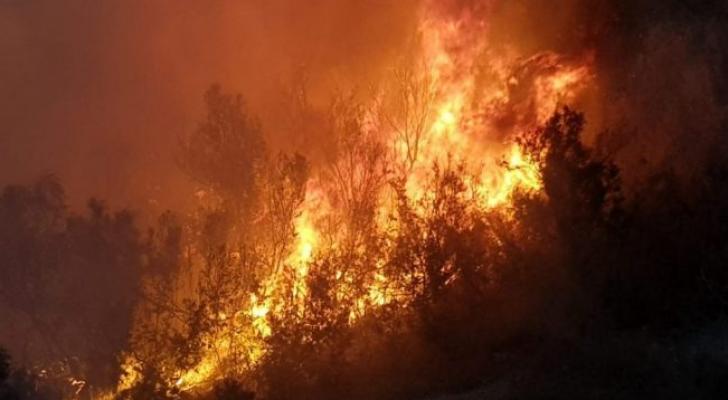 حريق الوادي الجديد