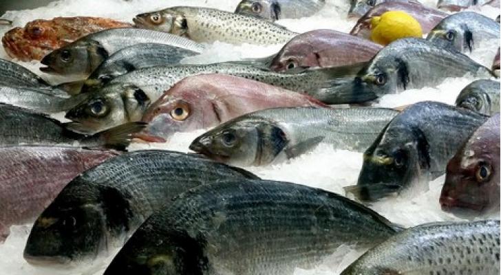 تم تخفيض الضريبة على بعض انواع الاسماك