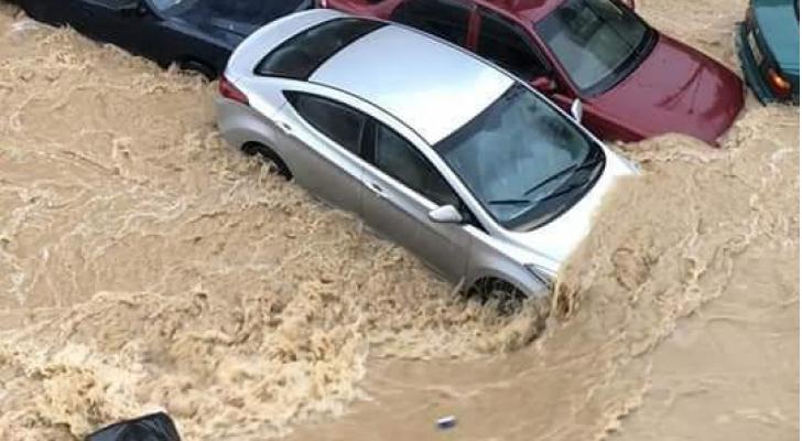 من سيول عمان أمس الخميس