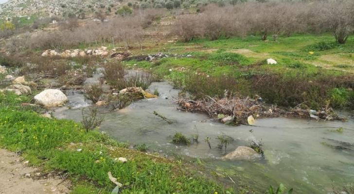 وادي الريان