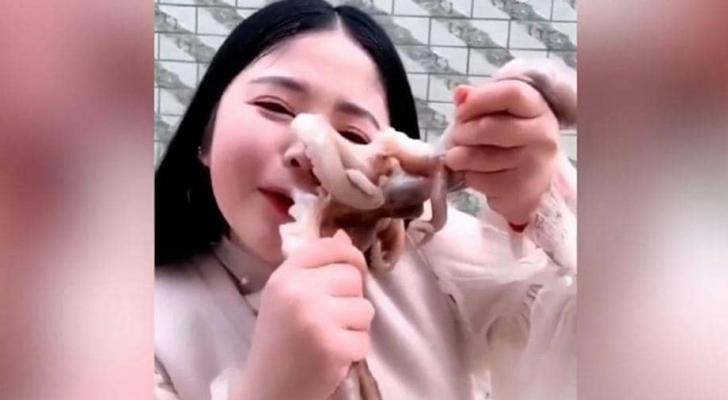 لحظة أكل الاخطبوط