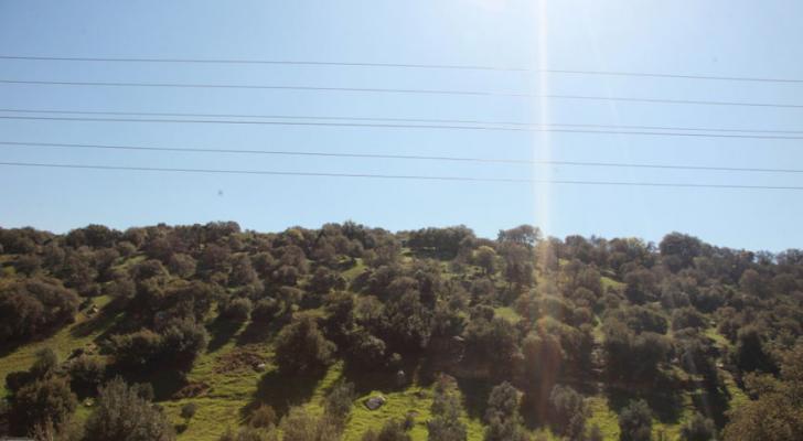تبقى الأجواء حارة في المرتفعات الجبلية والسهول وحارة جداً في باقي مناطق المملكة - ارشيفية