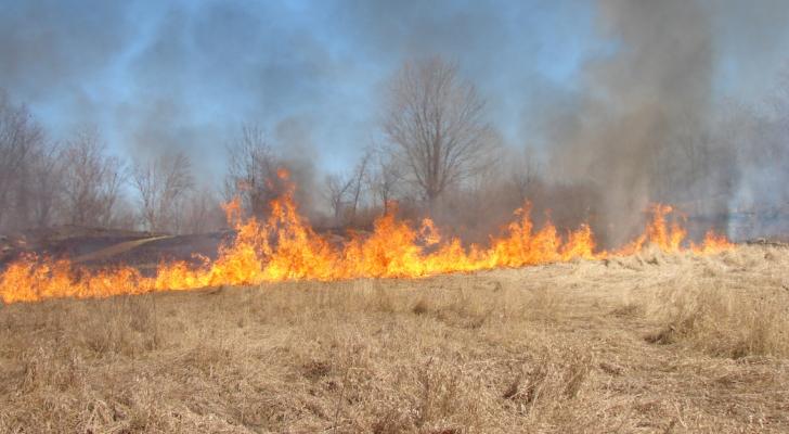 معظم الحرائق مفتعلة