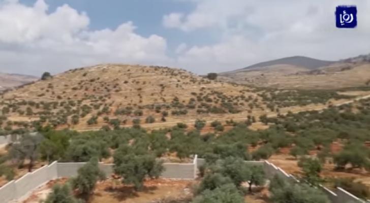الاحتلال يستولي على أراض من قريتي دير الحطب وعزموط شرق نابلس