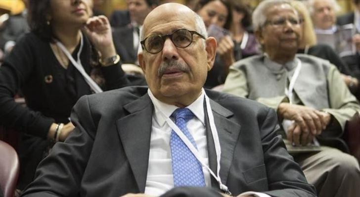 نائب الرئيس المصري الأسبق محمد البرادعي - ارشيفية