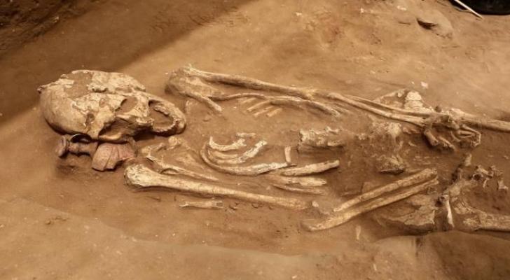 هيكل عظمي عثر عليه في أثناء التنقيب في مقبرة عسقلان العائدة إلى مطلع العصر الحديدي