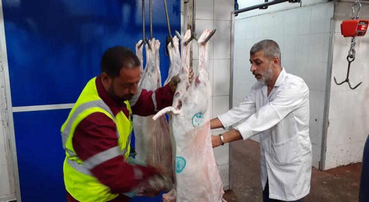 مسلخ الأمانة يباشر باستخدام أختام اللحوم الجديدة
