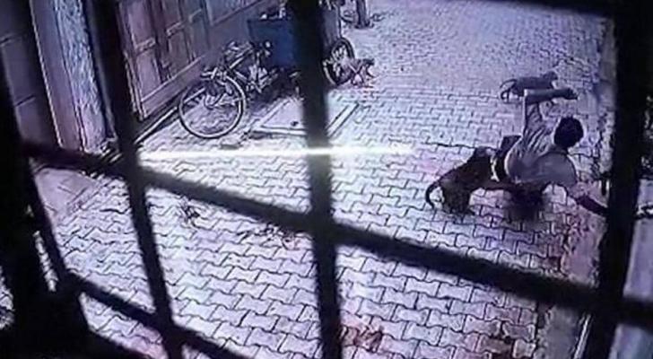 الصورة التقطت من كاميرات المراقبة لقرد يهاجم أحد السكان