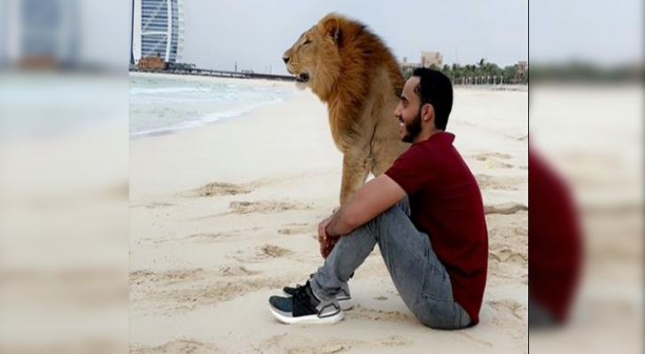 شاب سعودي يلاعب أسدا ونمرا على شواطئ دبي ويخرج عن المألوف!