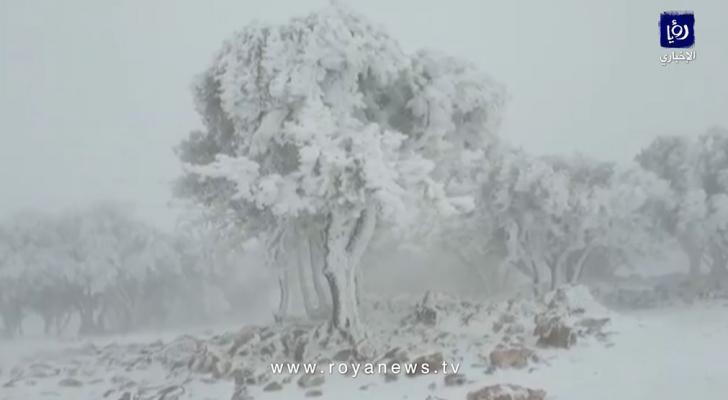 تجدد تساقط الثلوج وانجماد شديد في منطقة الهيشة