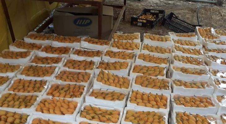 منتجات اردنية