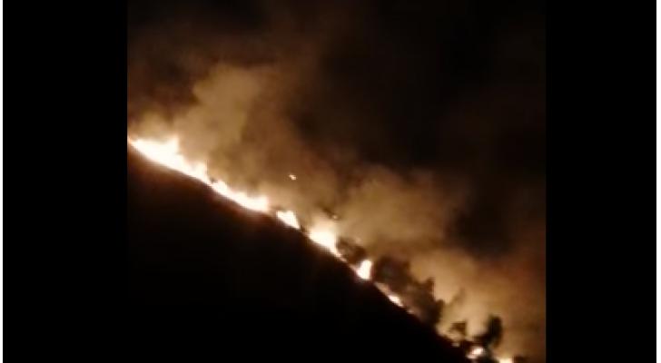 السيطرة على حريق غابة بالبلقاء
