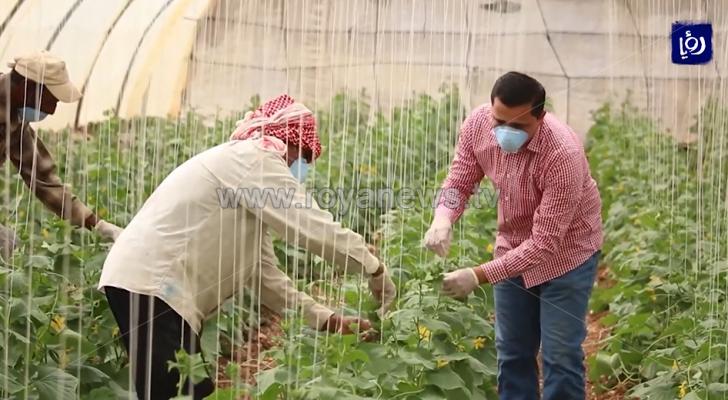 موسم زراعي مثقل بالخسائر في الكرك وتفاؤل بدعم الإنتاج الزراعي