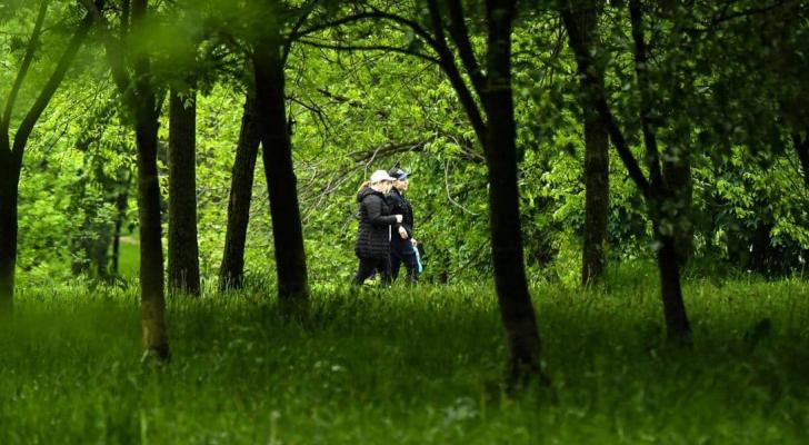 حدائق روسيا